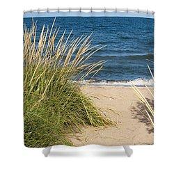 Beach Path Shower Curtain by Barbara McMahon