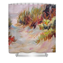 Beach Path Through The Dunes Shower Curtain