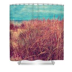 Beach Path Through The Grasses Shower Curtain