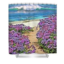 Beach Pathway Shower Curtain