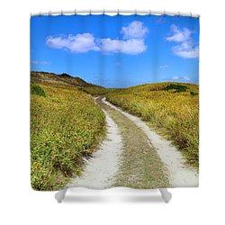 Beach Road Shower Curtain by Sean Davey