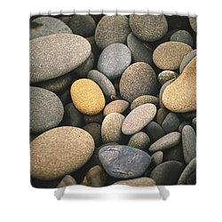 Beach Rocks  Shower Curtain