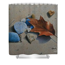 Shower Curtain featuring the painting Beach Still Life II by Pamela Clements