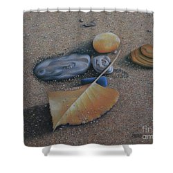 Shower Curtain featuring the painting Beach Still Life IIi by Pamela Clements
