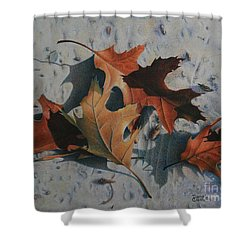 Shower Curtain featuring the painting Beach Still Life by Pamela Clements