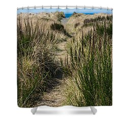 Beach Trail Shower Curtain