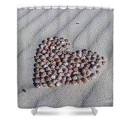 Beach Treasure Shower Curtain