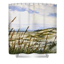 Beach Watercolor 3-19-12 Julianne Felton Shower Curtain
