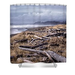 Beached Driftlogs Shower Curtain