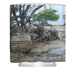 Shower Curtain featuring the photograph Beached Lobster Trap by Robert Nickologianis