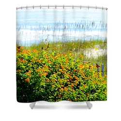 Beachy Butterflies  Shower Curtain by Mary Ward