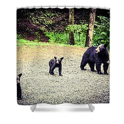 Bear Family Affair Shower Curtain