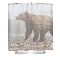 Bear In Fog Shower Curtain