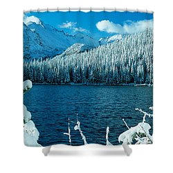 Bear Lake Shower Curtain by Eric Glaser