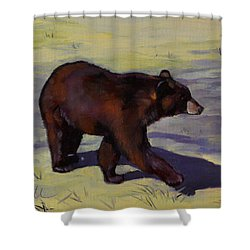 Shower Curtain featuring the painting Bear Shadows by Pattie Wall