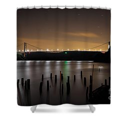 Bear Under The Sky Shower Curtain