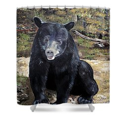 Shower Curtain featuring the painting Bear - Wildlife Art - Ursus Americanus by Jan Dappen