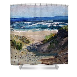 Shower Curtain featuring the painting Bearberry Hill Truro by Michael Helfen