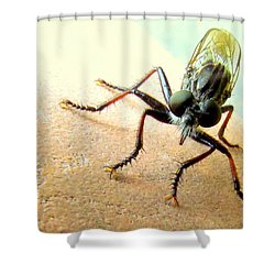 Bearded Robber Fly Shower Curtain