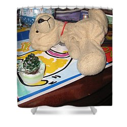 Beary Takes A Nap Shower Curtain