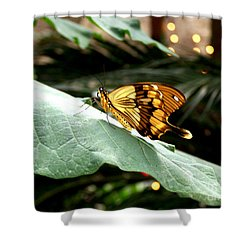 Beautiful Blessings Shower Curtain by Kathy  White