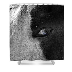 Beautiful Blind Soul Horse Shower Curtain