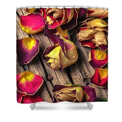 Beautiful Decay Shower Curtain by Garry Gay