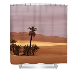 Beautiful Desert Shower Curtain