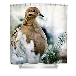 Beautiful Dove Shower Curtain
