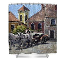 Beautiful European Town Szentendre Shower Curtain
