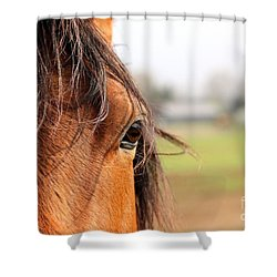 Beautiful Eye Shower Curtain