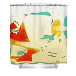 Shower Curtain featuring the photograph Fixed Wing Aircraft Poster by R Muirhead Art