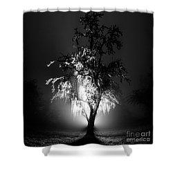 Beautiful Foggy Night 1 Shower Curtain
