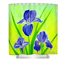 Beautiful Iris Flowers Card Shower Curtain