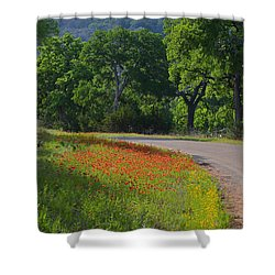 Beautiful Light On The Loop Shower Curtain by Lynn Bauer