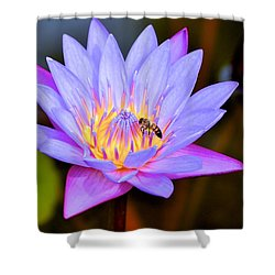 Beautiful Lily And Visiting Bee Shower Curtain by Kristina Deane