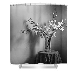 Beautiful Melancholy Shower Curtain by Amy Weiss