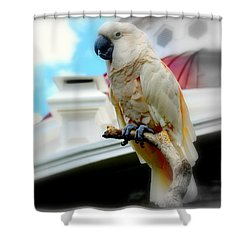 Beautiful Salmon-crested Cockatoo Shower Curtain