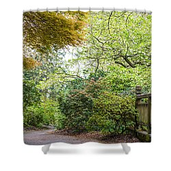 Beautiful Pathway Shower Curtain by Priya Ghose