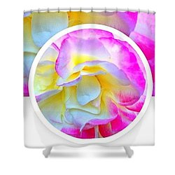 Beautiful Pink And Yellow Rose Shower Curtain by Anna Porter