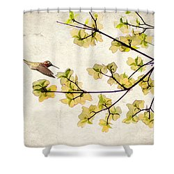 Beautiful Spring Shower Curtain by Darren Fisher