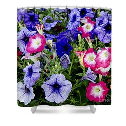 Shower Curtain featuring the photograph Beautiful Summer Annuals by Wilma  Birdwell