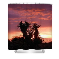 Beautiful Sunset In Arizona Shower Curtain