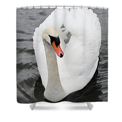 Shower Curtain featuring the photograph Beautiful Swan by Tiffany Erdman