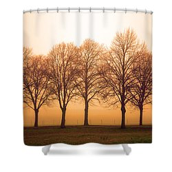 Beautiful Trees In The Fall Shower Curtain by Tommytechno Sweden