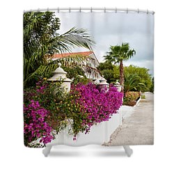 Beautiful Walk Shower Curtain