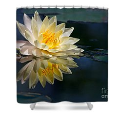 Beautiful Water Lily Reflection Shower Curtain