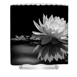Beautiful Water Lily Reflections Shower Curtain