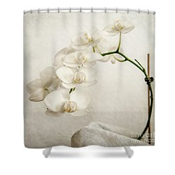 Beautiful White Orchid II Shower Curtain