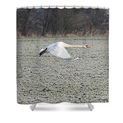 Beautiful Wild Geese Shower Curtain